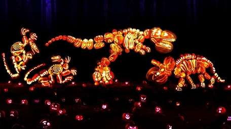 The Rise of the Jack O'Lanterns at Old