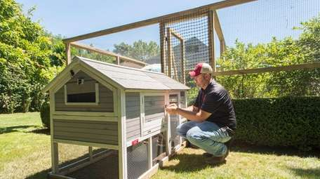 Rent-A-Chicken franchise owner Jim Jonke, tends the coop