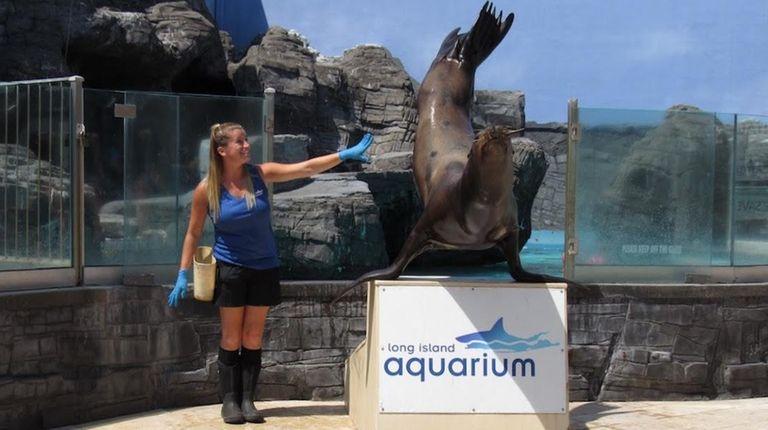 Caroline Walsh, a mammal trainer at Long Island