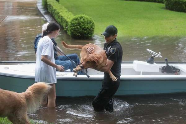 ... security patrol help rescue residents and their dogs in the upscale River Oaks locale after it was flooded from Tropical Storm Harvey on Aug.