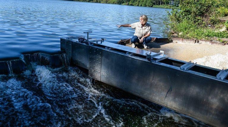 Heidi O'Riordan, an aquatic biologist with the New