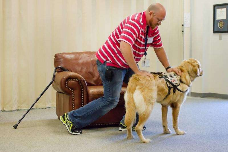 All disabled veterans are eligible for service dogs