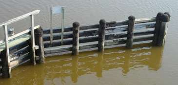 Brown tide at the Quogue canal bridge on