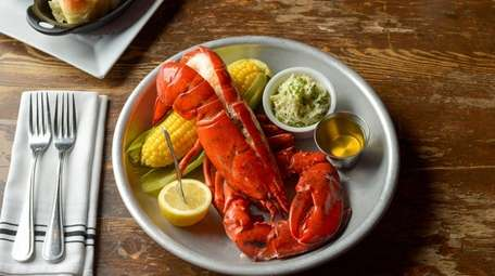 A steamed Maine lobster.
