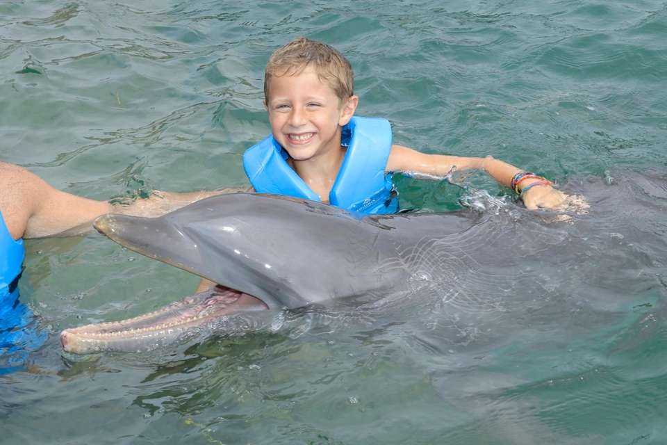 Swimming with Dolphins-Playa Mujeres