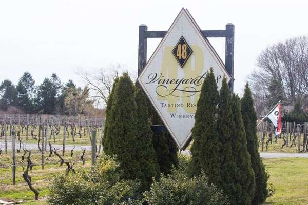 Vineyard 48 in Cutchogue in March 2016. The