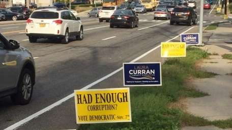 Democratic campaign signs lined Jericho Turnpike Thursday evening,
