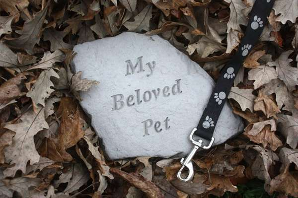 Grieving for the loss of a beloved pet.