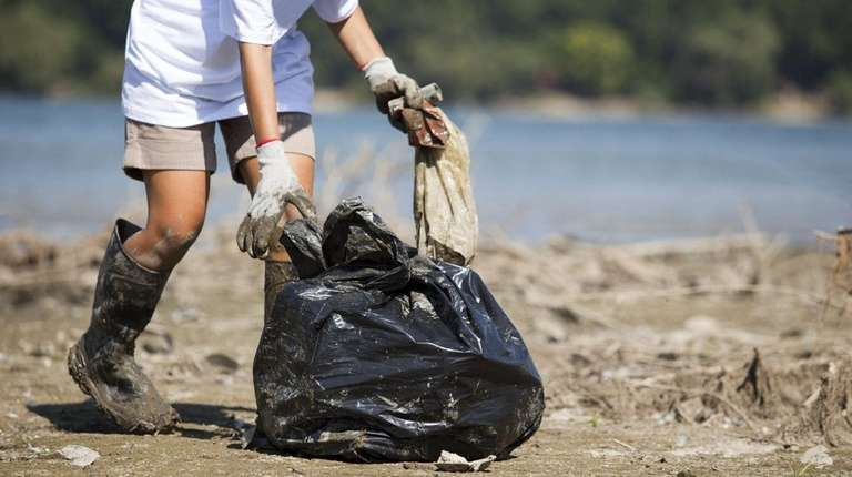 Sachem Public Library is hosting a park cleanup