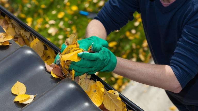 Regularly cleaning the gutters of your house will