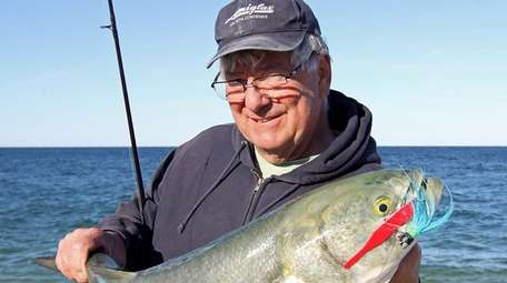 Surf fishermen are waiting for bluefish to start