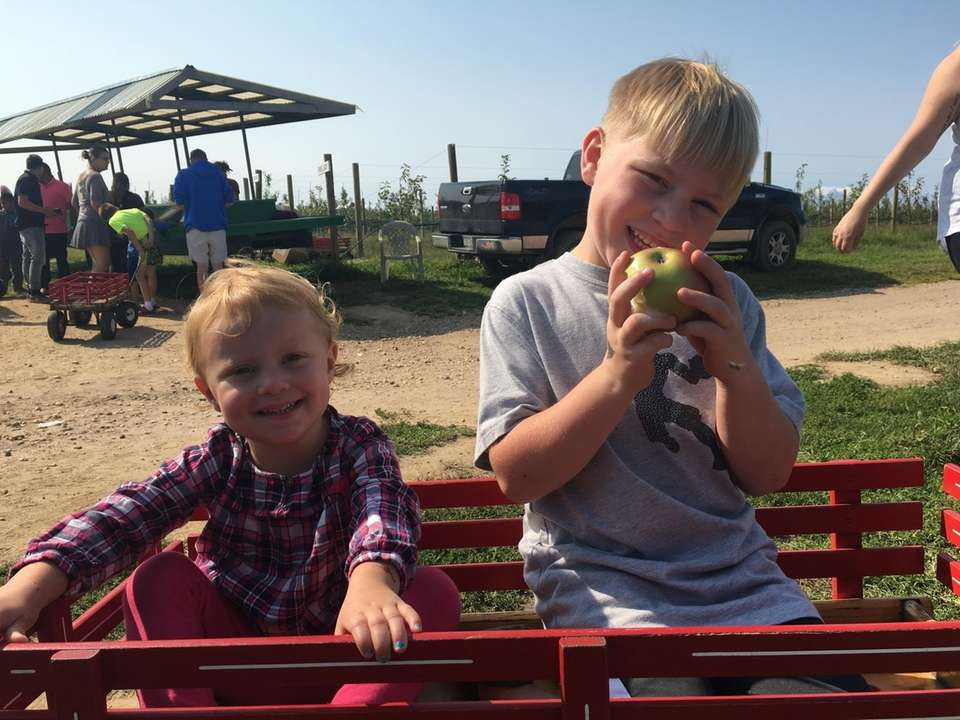 Windy acres farms. Liam and Riley Ricciardi. Picking