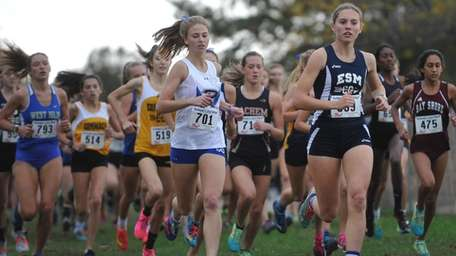 Runners compete in the Suffolk cross country Division