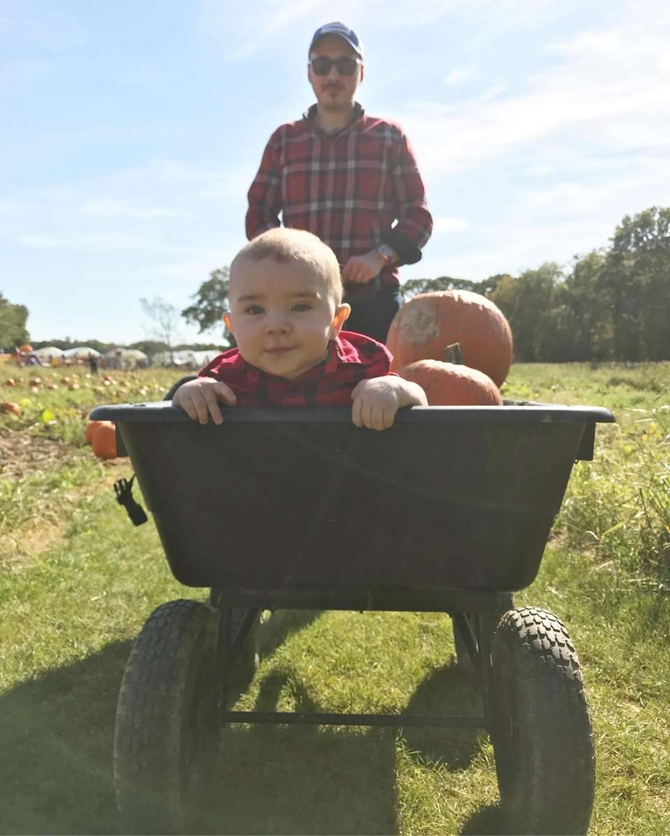 Henry's first time pumpkin picking at the Borellas