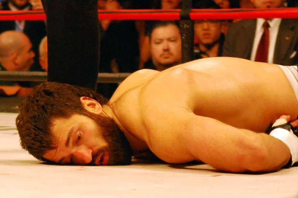 Andrei Arlovski was knocked out in the first