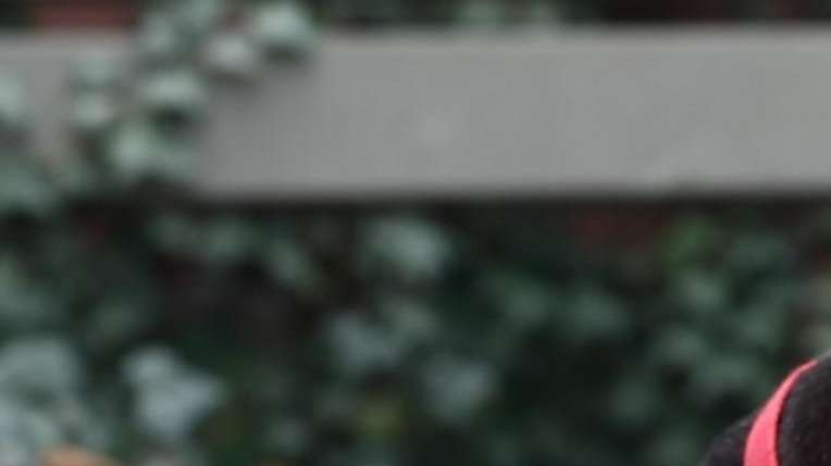 Tango is a 1-year-old American Staffordshire terrier mix.