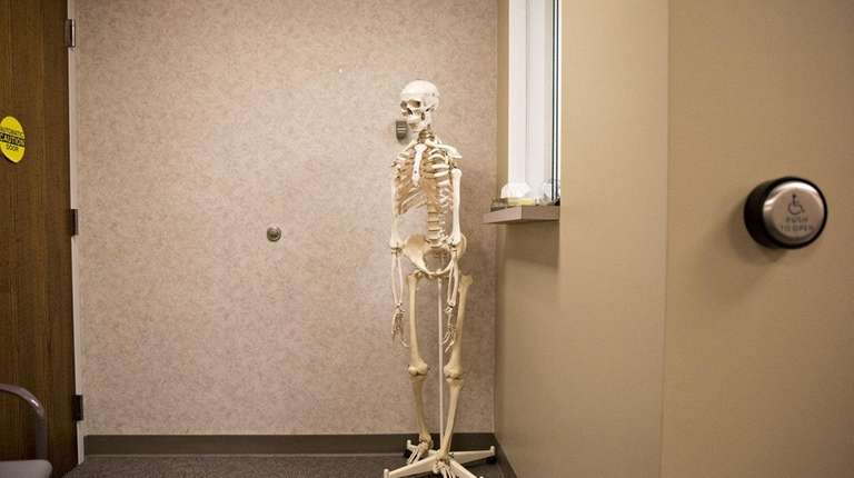 A human skeleton model stands outside a physical