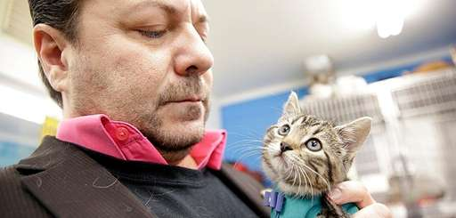 Little Shelter executive director David Ceely with kitten