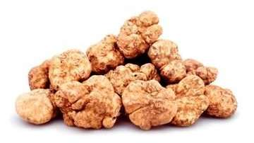 A pile of white truffles, golden in color