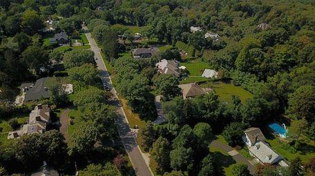Aerial view of tree-lined Elderfields Road in Flower