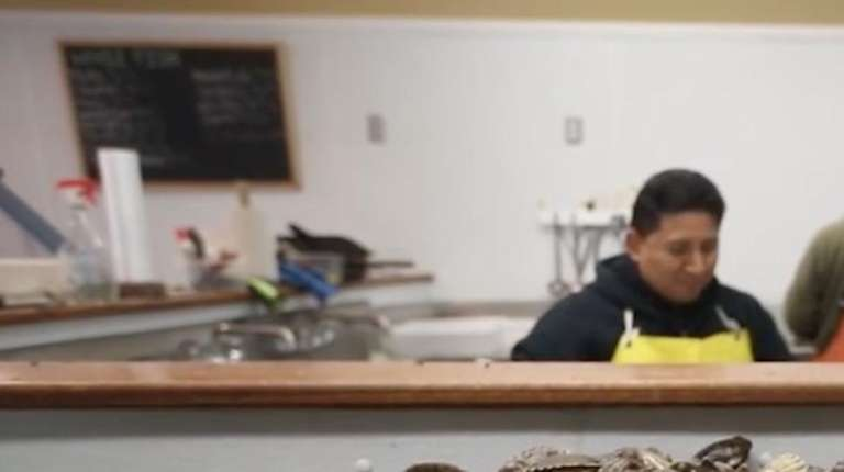 Huge scallop harvest growth in oyster farming boost east for Southold fish market