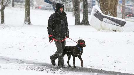 Jim Carr of Huntington walks his dog, Cooper,