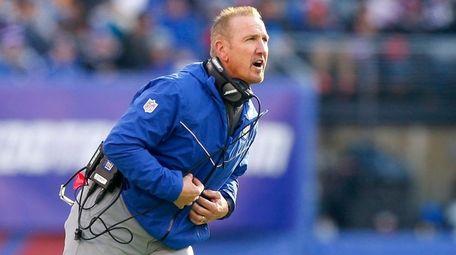 Interim head coach Steve Spagnuolo of the New