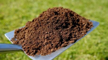 Have your soil tested to figure out what
