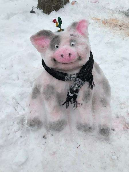 Snow Pua (Moana)