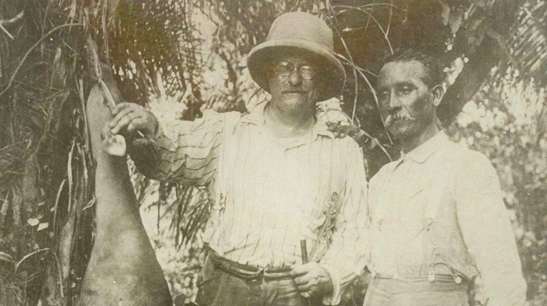 Theodore Roosevelt and Candido Rondon with a bush