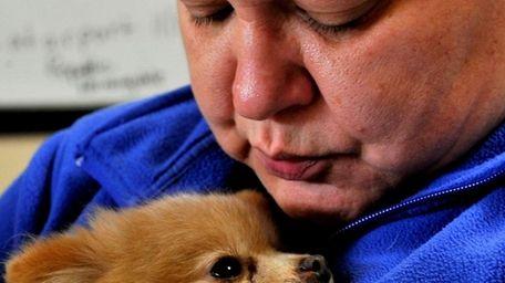 A file photo of a female Pomeranian named