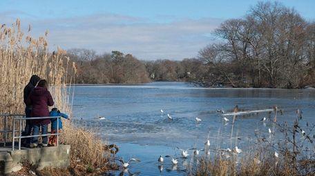The 423-acre Massapequa Preserve includes one of the
