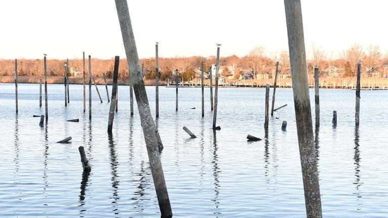 Cold weather has damaged pilings in Forge River