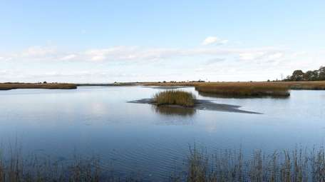Flax Pond in Old Field will see improvements