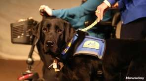 Four Long Islanders were given specially trained dogs