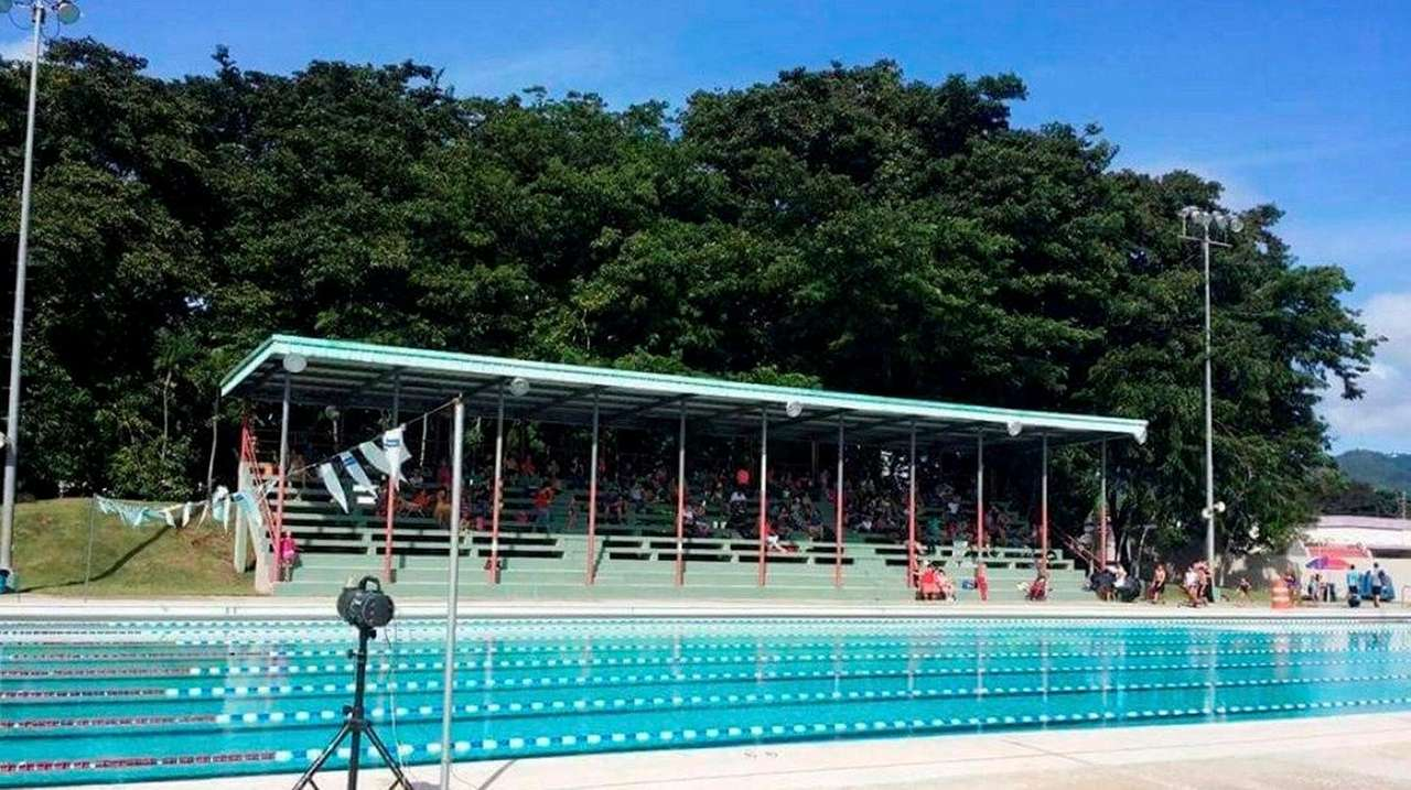 Nyc Youth Swim Team Pools Resources To Help Puerto Rico Newsday