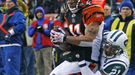 Cincinnati Bengals receiver Laveranues Coles (11) catches an