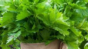 Wrapping organic celery in paper will increase its