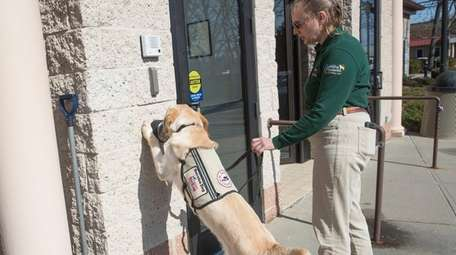 Meyers, a service dog for America's VetDogs in