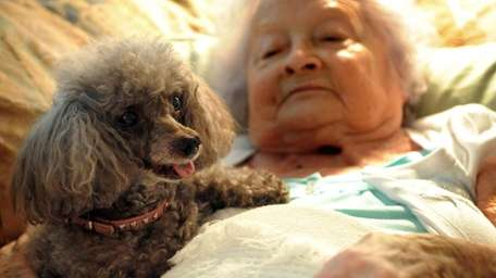 Mary Pasko with her toy poodle 'Coco' in