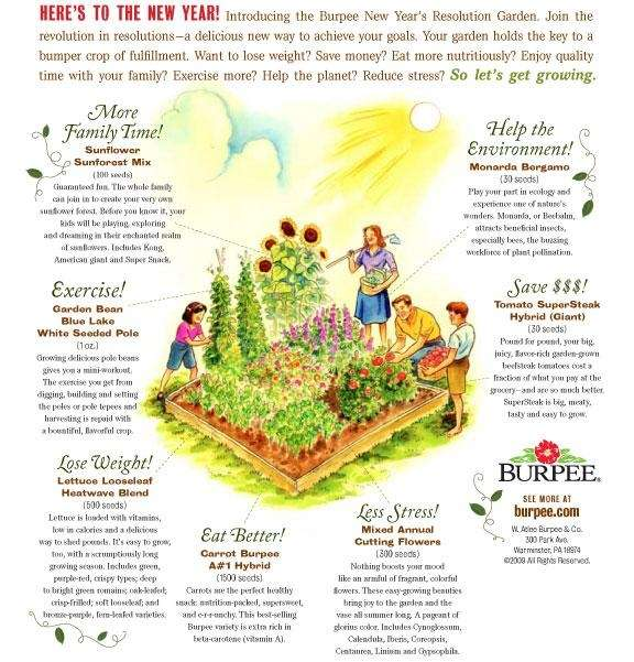 Burpee's New Year's Resolution Garden package