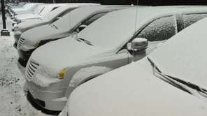 Cars in a Port Jefferson dealership are blanketed
