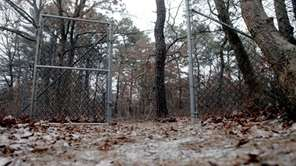 The woods at Pinewood Avenue in Central Islip