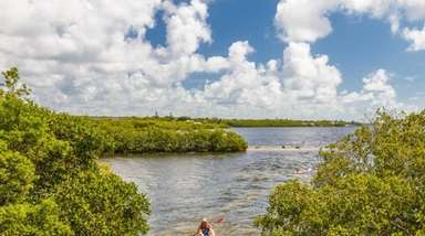 Kayaking in John Pennekamp State Park in Key
