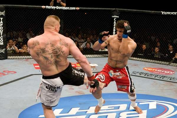 Frank Mir lost to heavyweight champ Brock Lesnar