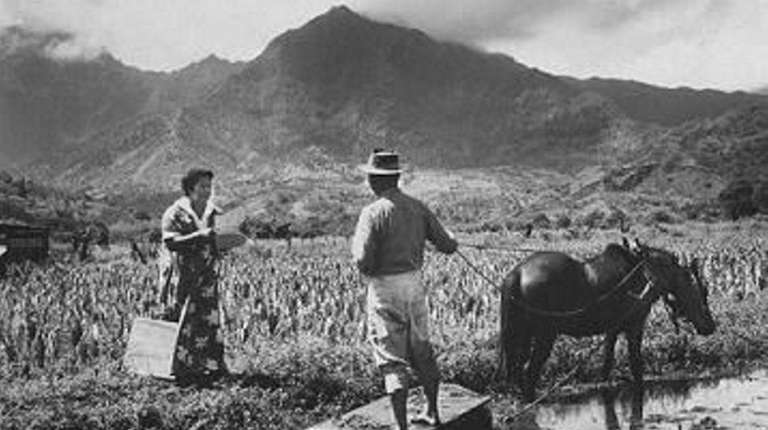 An enumerator interviews a farm worker in a