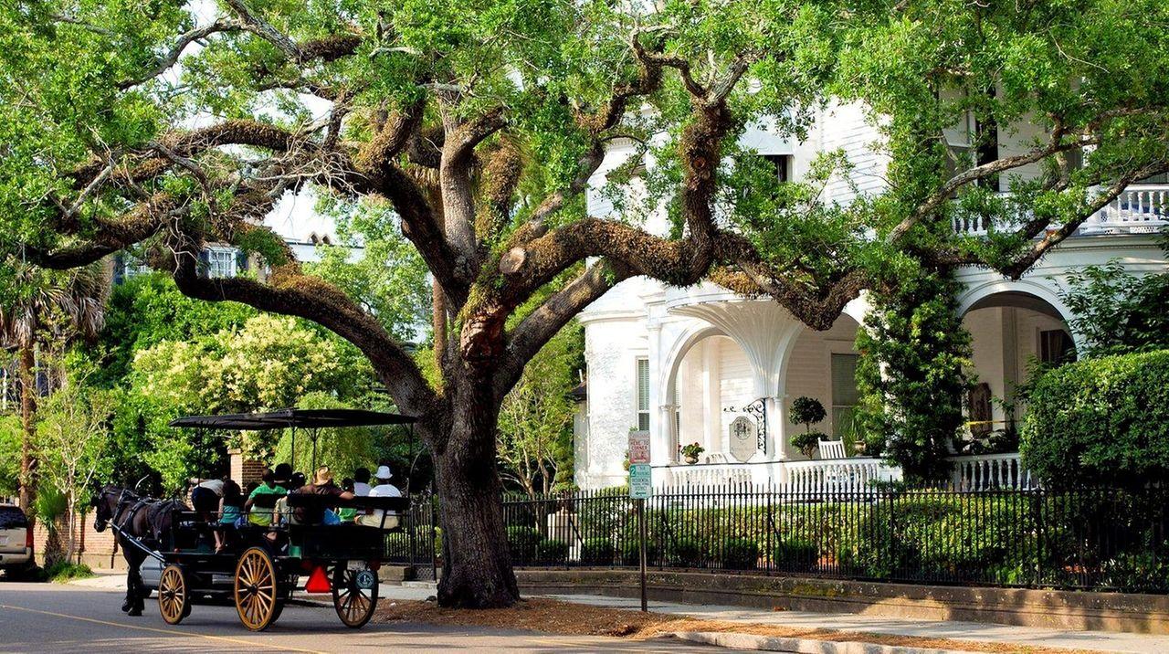 Exploring Charleston South Carolina Where Old South