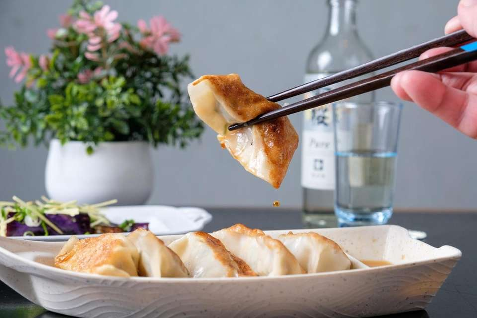 Homemade gyoza filled with minced pork, leeks, scallions,
