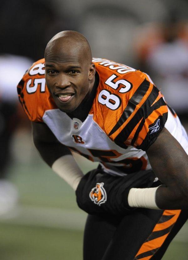 Cincinnati Bengals wide receiver Chad Ochocinco.