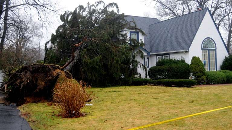 A large tree fell on a home on